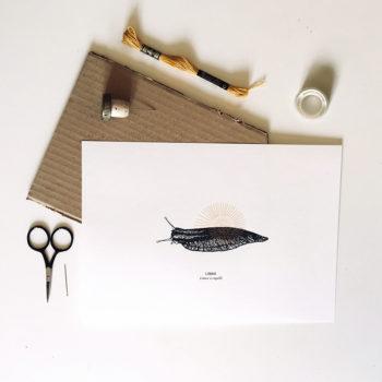 LIMAX, Kit de Broderie sur papier, matériel kit