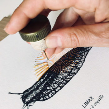 LIMAX, Kit de Broderie sur papier, perforation
